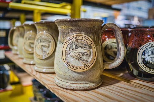 Petrified Forest National Park mug in Cinnamon Roll