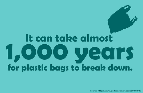 Plastic Bag fact