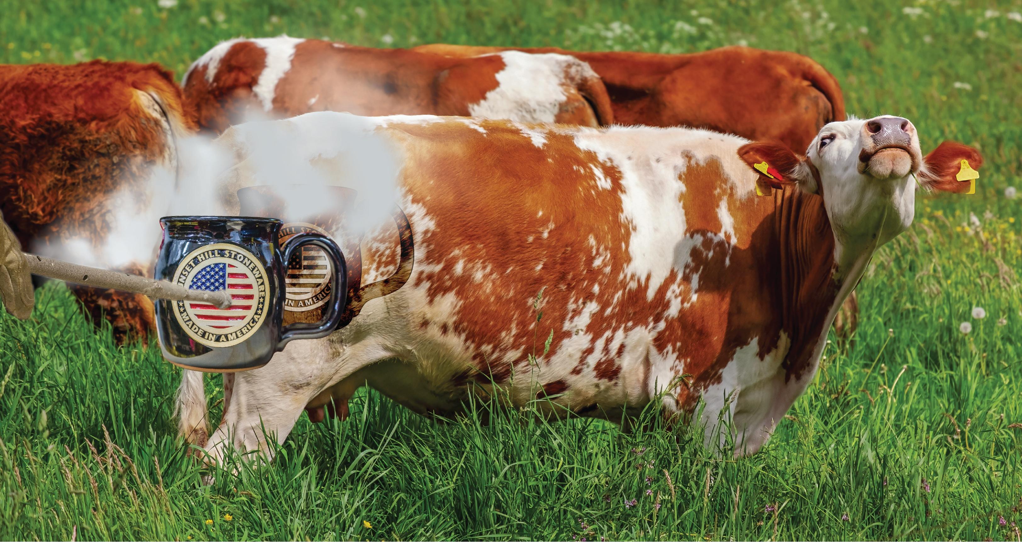 SHS Blog- Branded Cow
